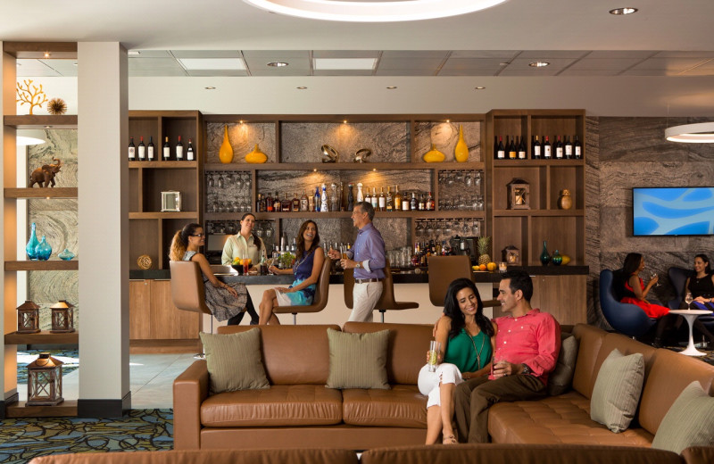 Lounge at The Grove Resort & Spa.