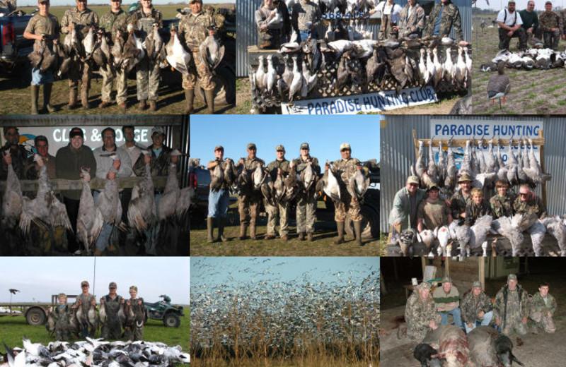 Hunting at Paradise Hunting Club.