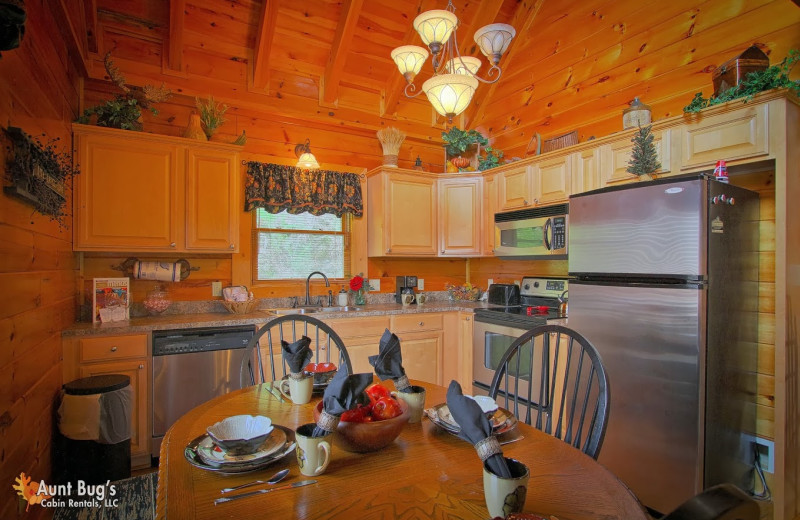 Cabin kitchen at Aunt Bug's Cabin Rentals, LLC.