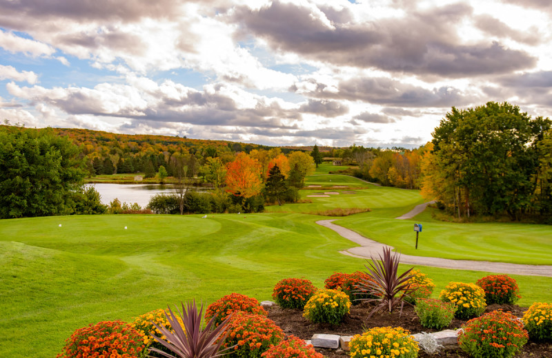 Golf at Deerhurst Resort.