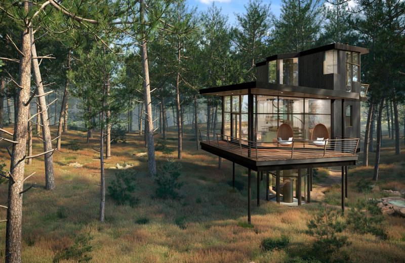 Tree Haus exterior at The Green O.