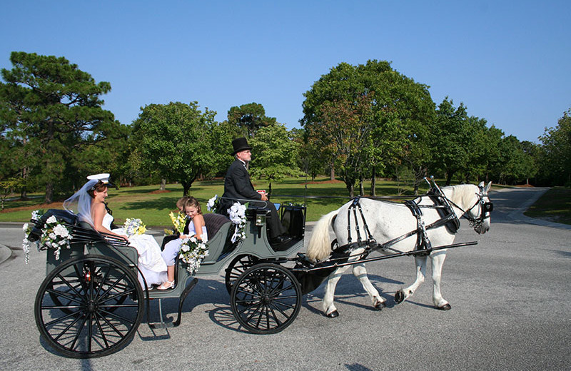 Wedding carriage at Beau Rivage Golf & Resort.