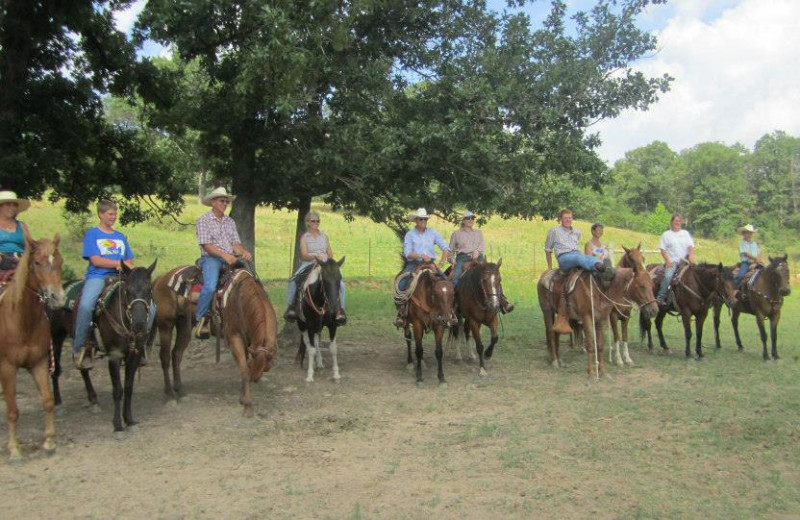 Horseback riding at Rockin Z Ranch.