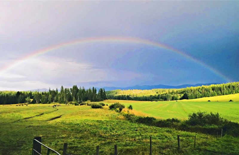 Rainbow at Western Pleasure Guest Ranch.