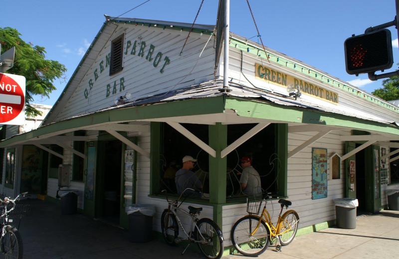Green Parrot Bar near The Banyan Resort.