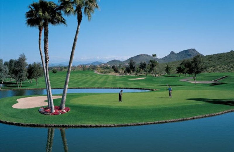 Golf Course at Pointe Hilton Tapatio Cliffs Resort