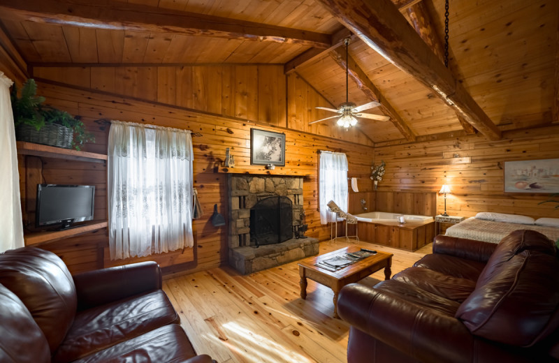 Cabin living room at Buffalo River Outfitters.