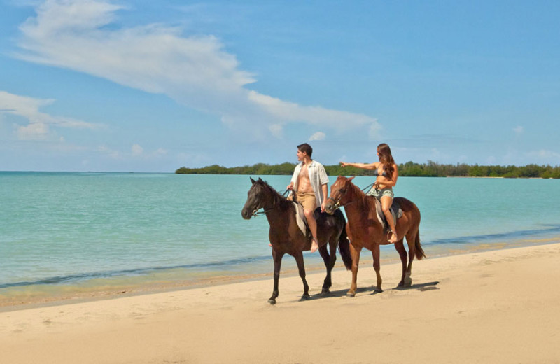 Horseback riding on the beach at Bluefields Bay Villas.