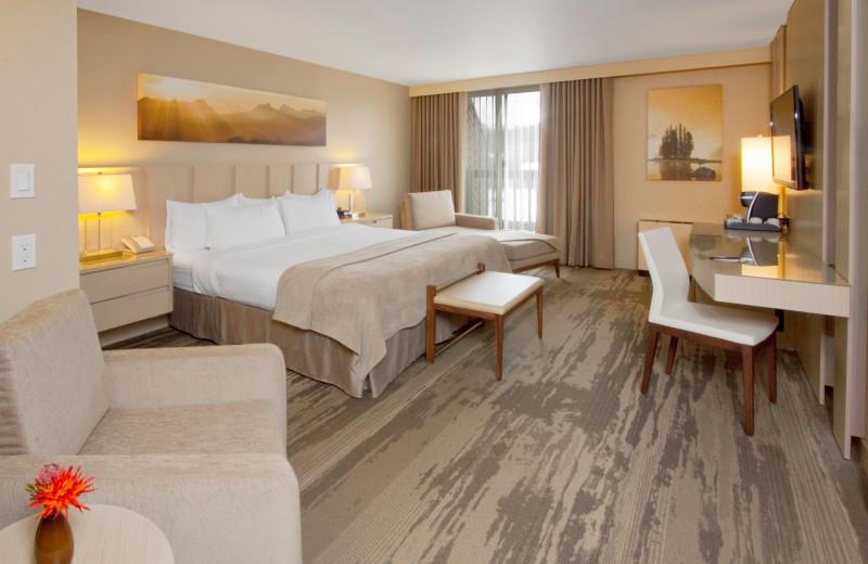 Guest room at Sawridge Hotel Jasper.