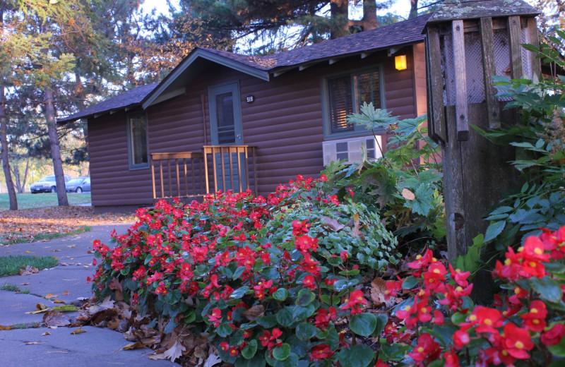 Cabin at Ruttger's Bay Lake Lodge.