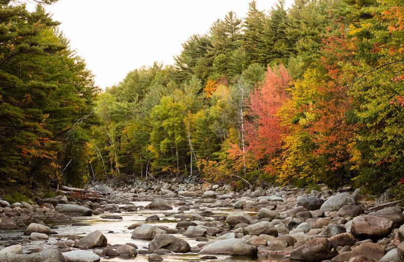 Creek at ADK Trail Inn.