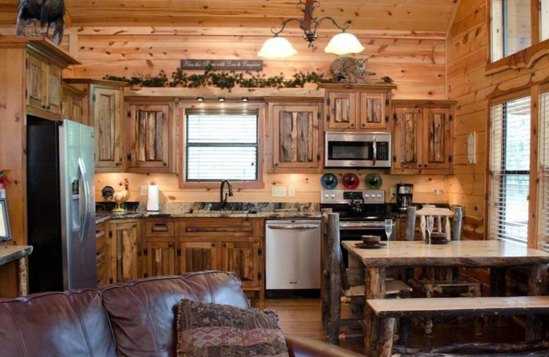 Cabin kitchen at Lake Mountain Cabins.