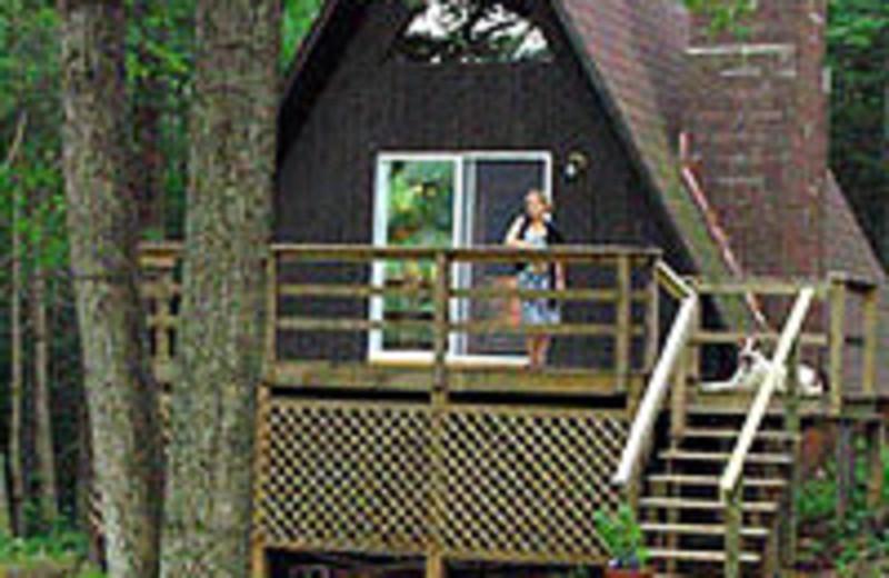 A-frame cottage at Montfair Resort Farm near Charlottesville