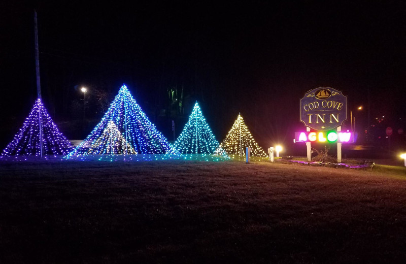 Holiday lights at Cod Cove Inn.