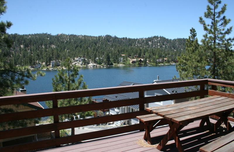 Cabin view at Honey Bear Lodge & Cabins.