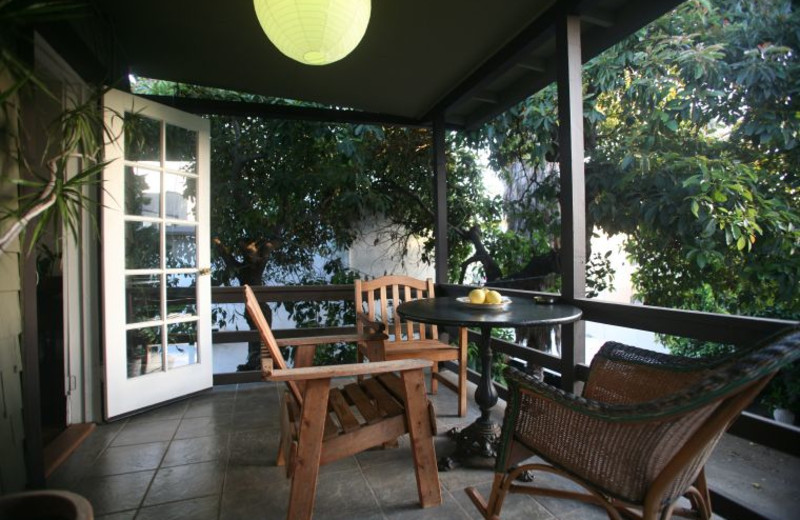 Patio view at Hollywood Pensione.