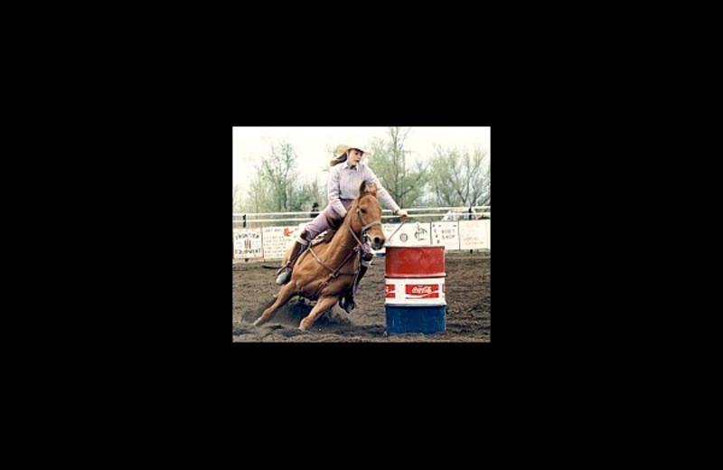 Horse riding at Naard Creek Ranch.