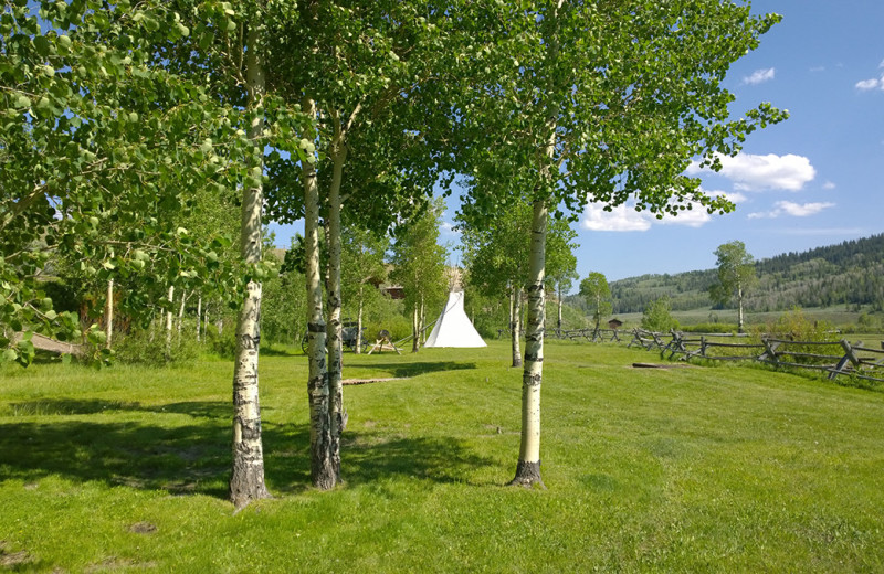 Teepee at Goosewing Ranch.