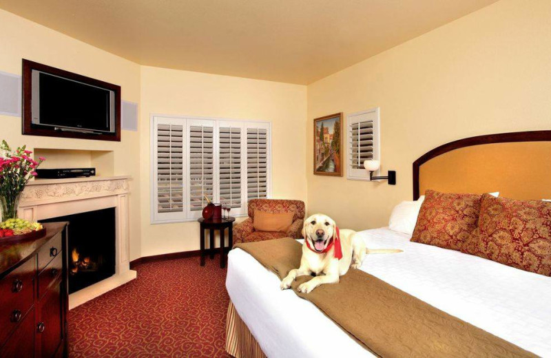 Pets welcome at Dry Creek Inn Hotel.