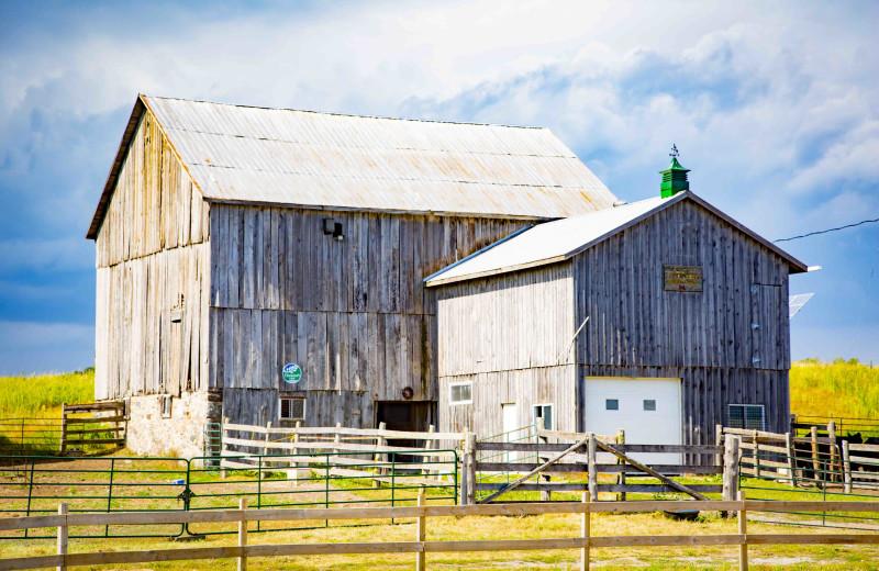 Farm at Elmhirst's Resort.