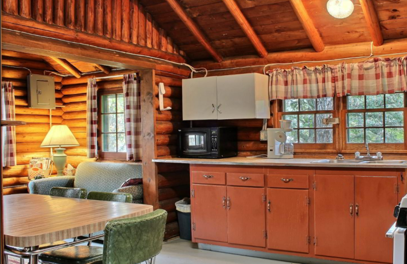 Cabin kitchen at Whaley's Resort & Campground.