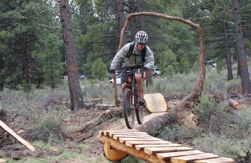 Mountain Biking at Seventh Mountain Resort