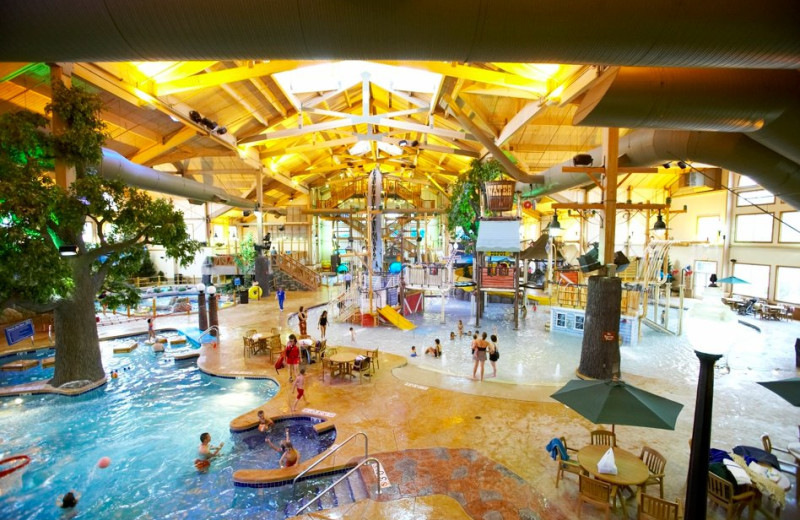 The Waterpark at The Country Springs Hotel & Waterpark