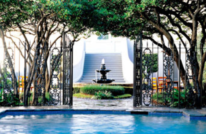 Pool at W New Orleans - French Quarter