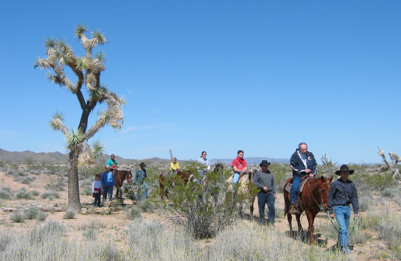 Horseback riding at Stagecoach Trails Guest Ranch.