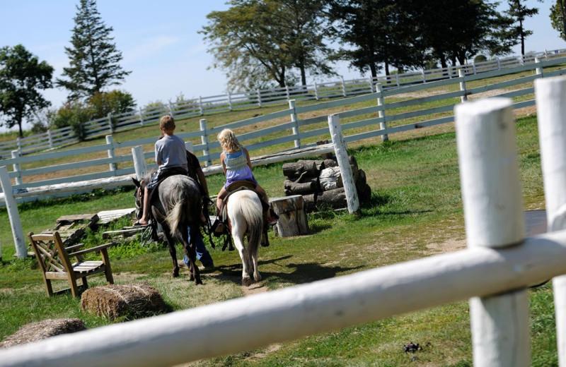 Horseback riding at Timber Ridge Lodge & Waterpark.