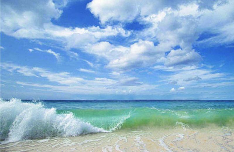 Ocean Waves at Meyer Vacation Rentals