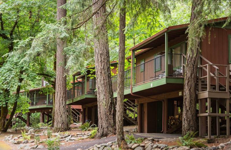 Exterior view of Morrison's Rogue River Lodge.