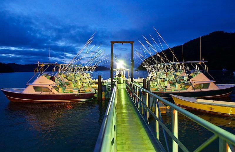 Fishing at Tropic Star Lodge.