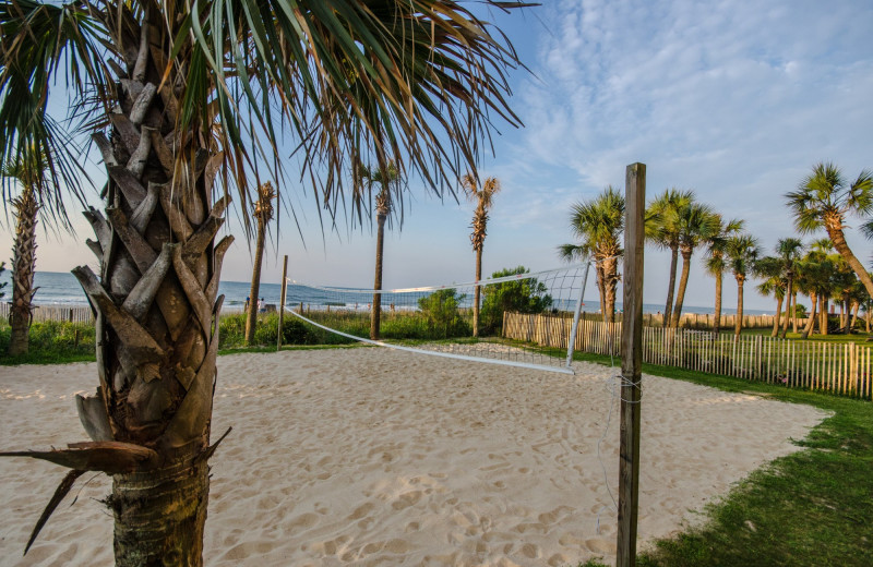 Volleyball court at Ocean Reef Resort.