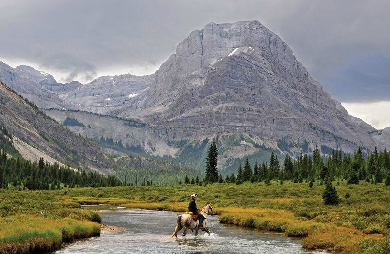 Horseback riding at Banff Trail Riders.