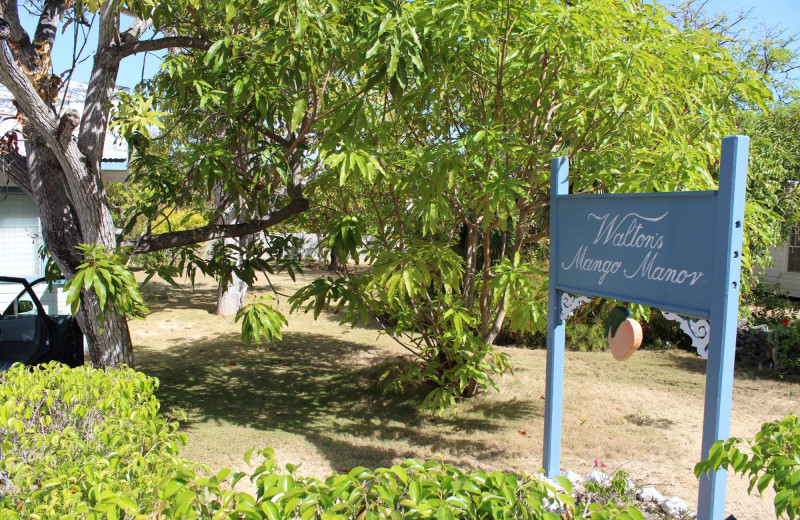 Exterior view of Walton's Mango Manor Bed & Breakfast.
