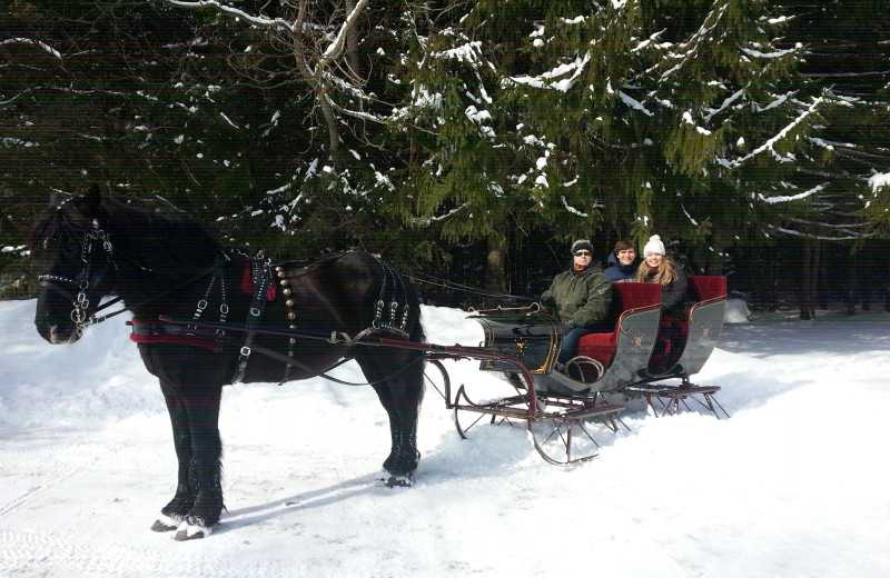 Sleigh ride at The Kingsley House.