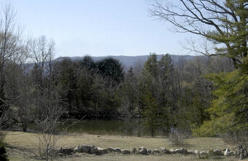 View from Moondance Ridge Bed & Breakfast.