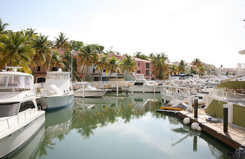 Harbor View of Club Cala de Palmas