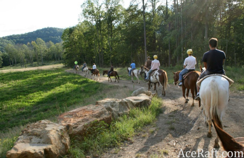 Horseback riding at ACE Adventure Resort.
