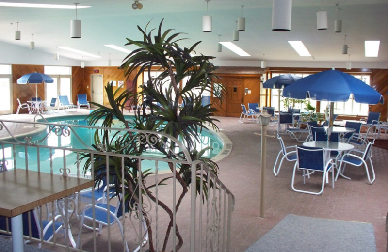 Indoor Pool at the Festival Inn
