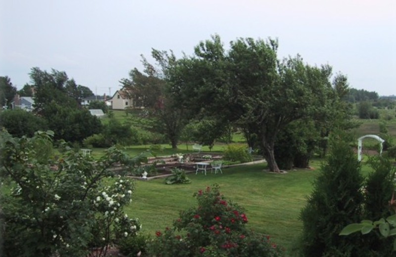Grounds at Marshlands Inn.