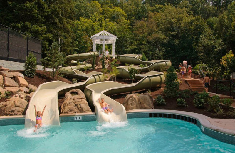 Water slides at The Homestead.