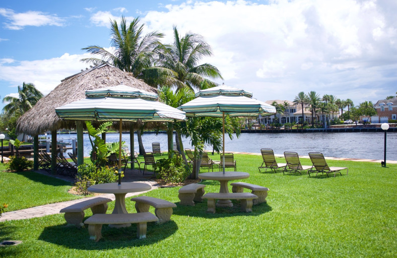Picnic area at Royal Flamingo Villas.