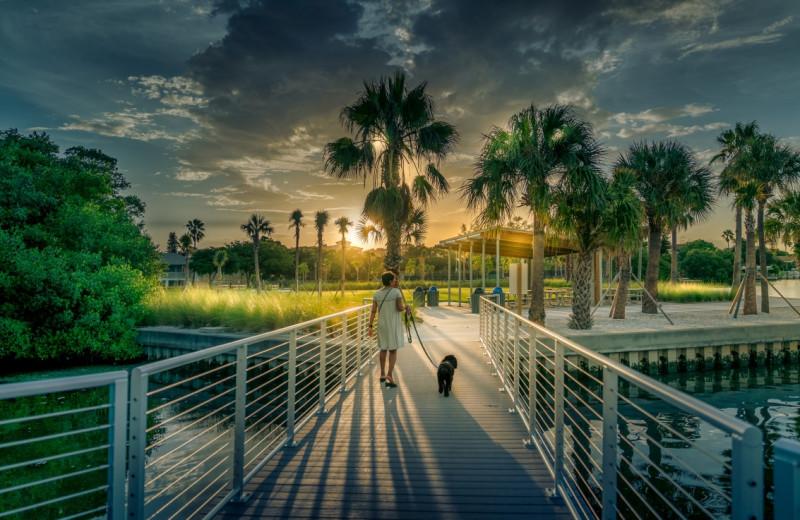 Park near Anna Maria Island Beach Rentals, Inc.