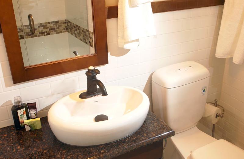 Guest bathroom at Elkhorn Manor.