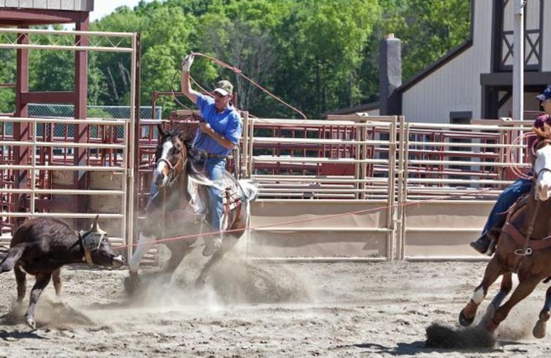 Rodeo at Malibu Dude Ranch.
