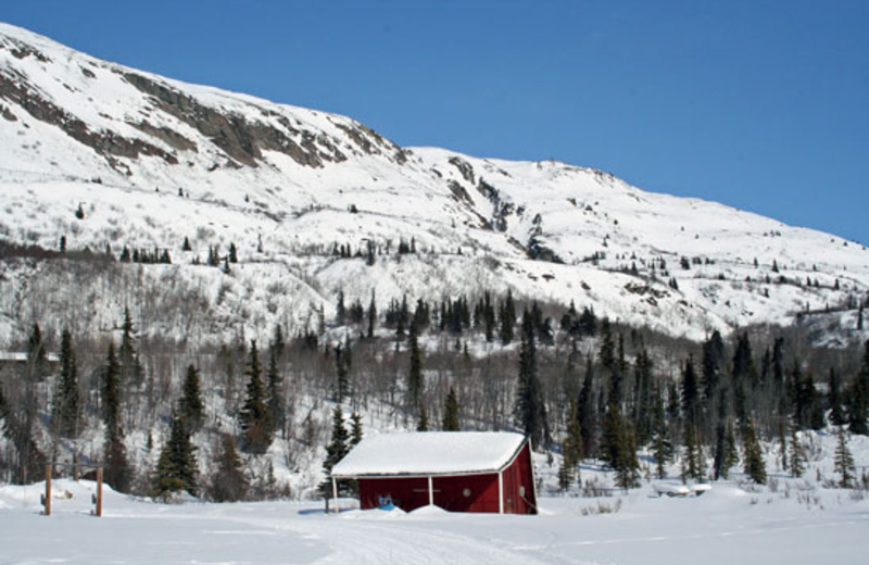 Mountain view with cabin at Majestic Valley Lodge.