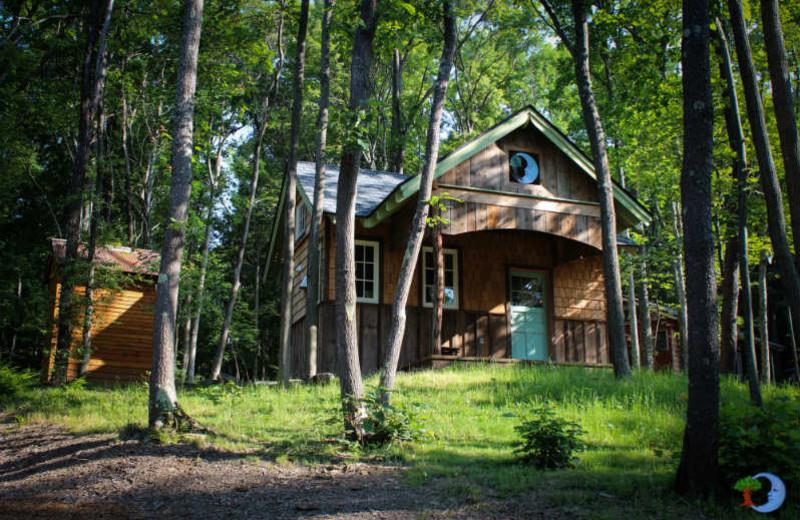 Cabin exterior at Blue Moon Rising.