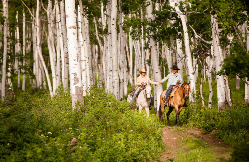 Horseback riding at The Home Ranch.
